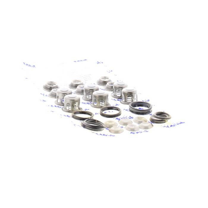 Cat-Pumps-Replacement-Parts-Kits-46976